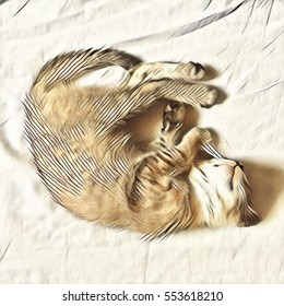 Kitten sleeps on bed digital illustration. Young shaggy cat lying on white bedding cover. Cozy home scene with lazy pet. Domestic animal warm colored portrait. Fluffy kitty rests in curl position