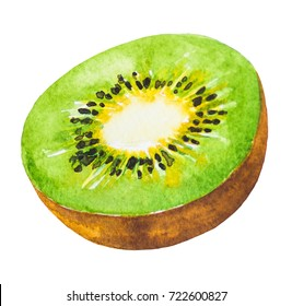 Kiwi fruit painting.Painted with watercolor.