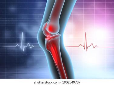 Knee joint anatomy on medical background. 3d illustration