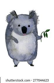 The koala bear with eucalyptus
