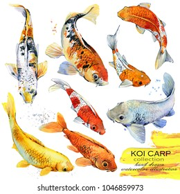 Koi carp hand drawn watercolor illustration set