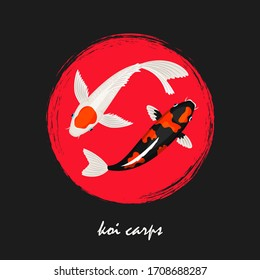 Koi japanese carps background. Koi fish banner design. Koi asian carp, fish traditional japan illustration