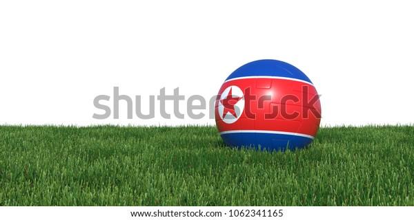Korea Korean flag soccer ball lying in grass, isolated on white background. 3D Rendering, Illustration.