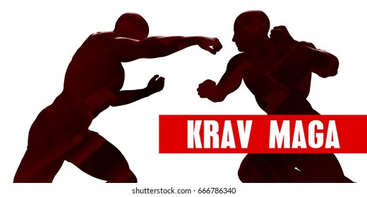 Krav maga Class with Silhouette of Two Men Fighting 3D Illustration Render