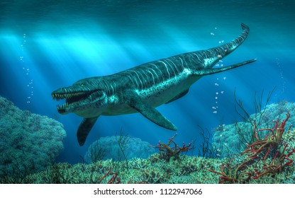 Kronosaurus was a marine reptile that lived in the ocean during the early Cretaceous period when dinosaurs roamed the land.  It is a type of pliosaur. 3D Rendering