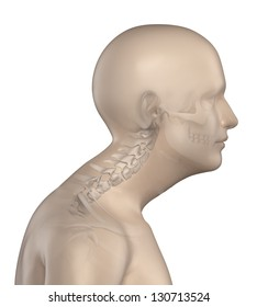 Kyphotic spine in cervical region phase 3