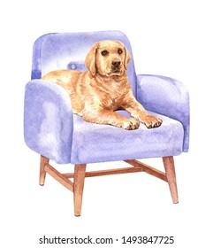 Labrador retriever of a dog. Watercolor hand drawn illustration. Watercolor Labrador sleep on sofa chair layer path, clipping path isolated on white background.