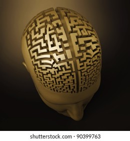 labyrinth in the human brain