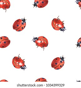 Lady bugs watercolor seamless pattern. Hand drawn red insects on white background.