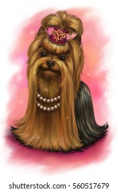 Lady Yorkshire Terrier. Illustration.