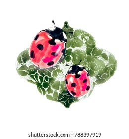 Ladybug watercolor sketch. Ladybird colorful graphic illustration.