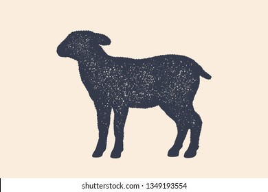 Lamb, sheep. Concept design of farm animals - Lamb or Sheep side view profile. Isolated black silhouette lamb or sheep on white background. Vintage retro print, poster, icon. Illustration