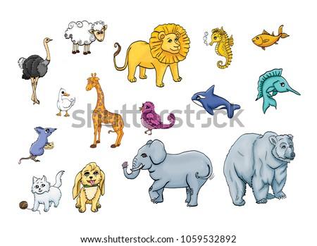 Land Sea Animals Animal Kingdom On Stock Illustration 1059532892 - Shutterstock