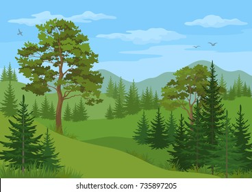 Landscape with Coniferous and Deciduous Trees, Grass, Mountains and Blue Cloudy Sky with Birds.