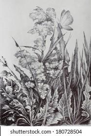landscape, drawing