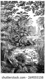 Landscape of the Miocene period in Lausanne, vintage engraved illustration. Earth before man  1886.