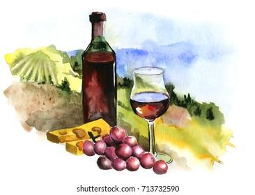 Landscape with vineyard, vintage pattern, Beaujolais Nouveau, watercolor Illustration