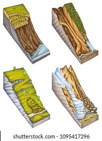 landslide, landslip, mudslide, types of landslide, landslide classification, rockfall and avalanche, rock-fall, landforms, downhill creep, soil creep, slumping flow, debris or mud flow, mountain