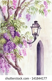 Lantern among the wisteria blossom against the wall