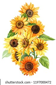 large bouquet of autumn yellow flowers, sunflowers, on an isolated white background, watercolor illustration, botanical painting