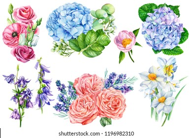 large collection of elements for wedding design, summer bouquets,  on an isolated white background, watercolor illustration, botanical painting
