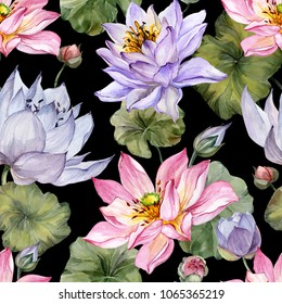 Large pink and purple lotus flowers with leaves on black background. Beautiful floral seamless pattern. Hand drawn botanical illustration. Watercolor painting. Design of textile or wallpaper.
