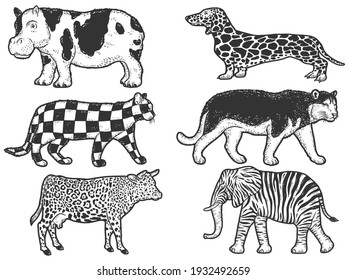 Large set, animals of atypical coat color. Sketch scratch board imitation.