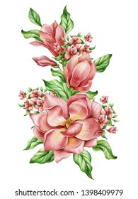 A large set of beautiful flowers magnolia watercolor handmade