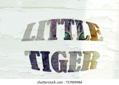 Large text small tiger on white background.