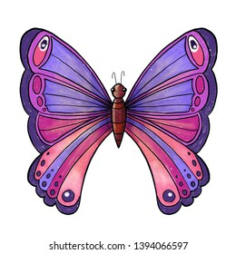 Large tropical multi-colored butterfly. Illustration.
