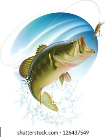 Largemouth bass is catching a bait and jumping in water spray. Raster image. Find editable version in my portfolio.