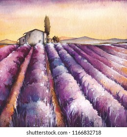 Lavender field with rural provencal house in Provence. Hand painted countryside watercolor illustration