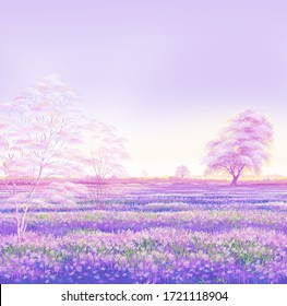 Lavender field in sunlight, Beautiful image of lavender field.Lavender flower field, image for natural background.Very nice view of the lavender fields.Perfect for invitation, wedding or greeting card