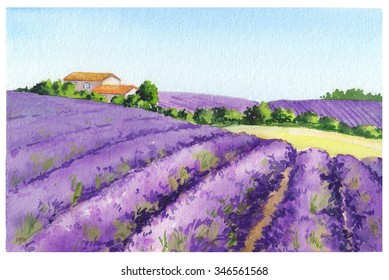 Lavender flowers field with rural provencal house in Provence, France. Watercolor