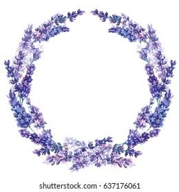 Lavender round wreath Watercolor lavender. Botanical illustration