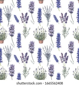 lavender watercolor pattern seamless provence style france plants aromatherapy hand-drawn flora spring summer bloom flowers aroma on a white background