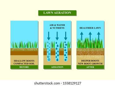 Lawn aeration illustration. Before and after aeration: gardening, lawn grass care service, landscape design. Benefits, advangages of aeration.  Raster version.
