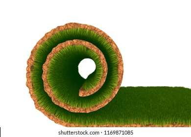 Lawn roll. Grassy field. Isolated on a white background. 3d rendering illustration.