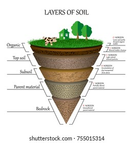 Layers of soil, education diagram. Mineral particles, sand, humus and stones, clay, natural fertilizer. Template for banners, page, posters,  illustration.