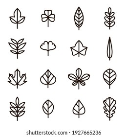 Leaf Signs Black Thin Line Icon Set Include of Maple, Clover, Oak and Birch. illustration of Icons