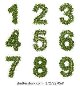 Leaf style number. 3D render of grass font isolated on white background