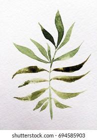 leave. watercolor