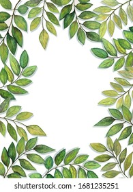 Leaves and Branches Border watercolor
