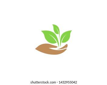 leaves in hand for plant care for logo design illustration on white background