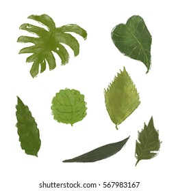 Leaves set illustrations
