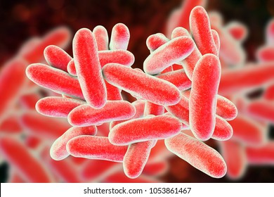 Legionella pneumophila bacteria, 3D illustration, the causative agent of Legionnaire's disease