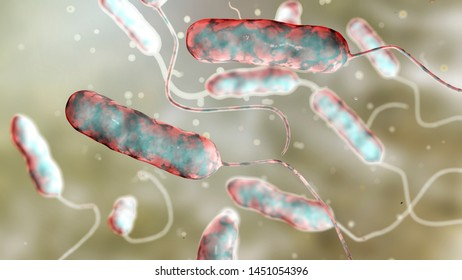 Legionella pneumophila bacterium, the causative agent of Legionnaire's disease, 3D illustration