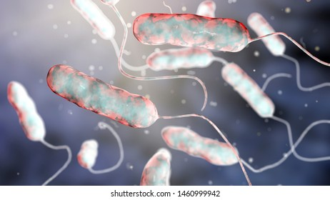 Legionella Images, Stock Photos & Vectors | Shutterstock