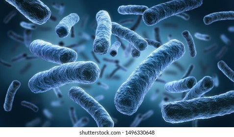 Legionella pneumophila - 3D-Illustration