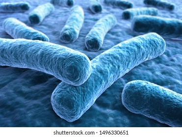 Legionella pneumophila - medical 3d illustration
